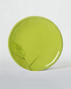 Aguada Dinner Plate - Lime