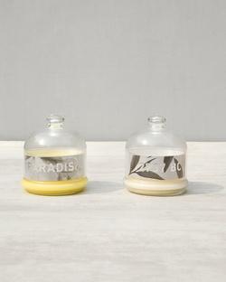 Fragrance Set - Large
